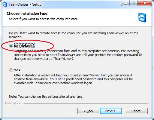 choose installation type - TeamViewer