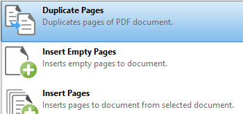 Duplicate Pages
