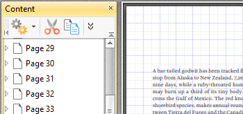Use the Content Pane to Edit Document Content