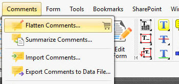 Summarize/Flatten/Export Comments