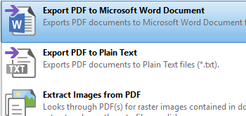 Export Documents to MS Word Document Format