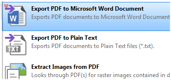 Export PDF to Microsoft Word Document