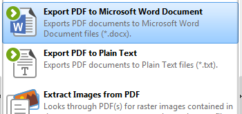 Export PDF to Microsoft Word Document