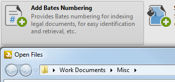 Add/Remove Bates Numbering